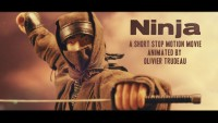 Ninja | The Mini Movie