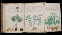 The Book That Can't Be Read – The Voynich Manuscript